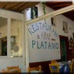platani3