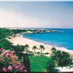 coral_sandy_beach